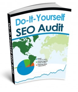 Nick Leroy's DIY Audit ebook